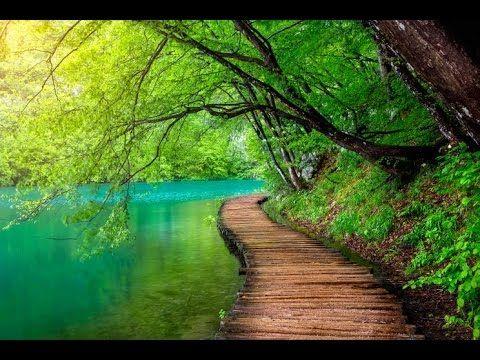 6 Hour Healing Meditation Music: Soft Music, Relaxing Music, Soothing Music, Relaxation Music ☯2684 - YouTube