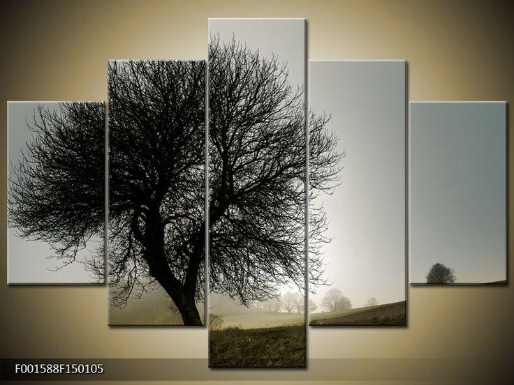 Moderní obraz F001588F150105