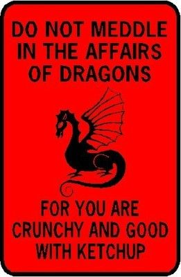 DO NOT MEDDLE IN THE AFFAIRS OF DRAGONS