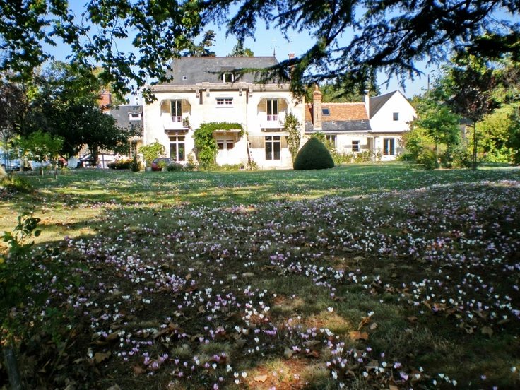 "Former house for 6 people located in the heart of a park of 6000 m². The town of St Avertin, at the edge of Tours, will offer you an excellent access toward the ""Châteaux de la Loire""."