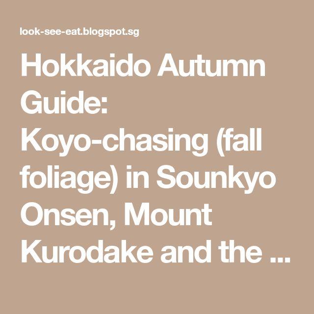 Hokkaido Autumn Guide: Koyo-chasing (fall foliage) in Sounkyo Onsen, Mount Kurodake and the Asahiyama Zoo!
