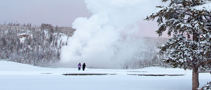 Old Faithful erupting in the winter at Yellowstone National Park during one of our Adventures by Disney Yellowstone vacation packages