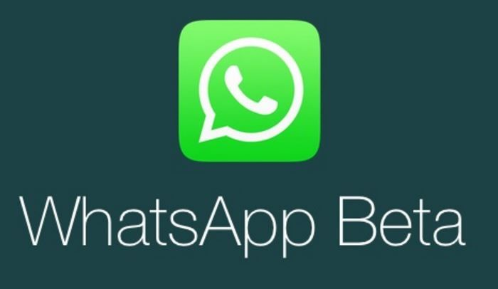 Atualização em vídeos no WhatsApp Beta