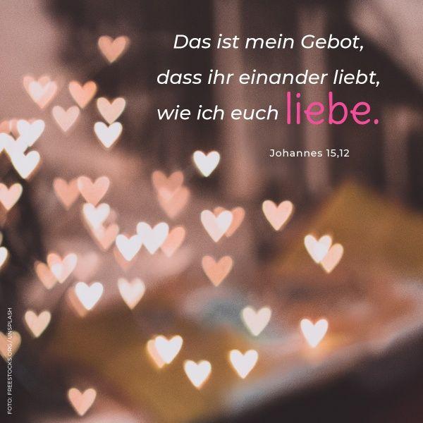 Bibel liebessprüche