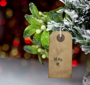Keep Your Christmas Tree Alive From Day One Trees