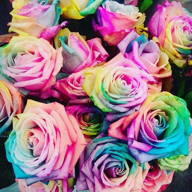 恋が叶うって噂の夢みたいな奇跡の花レインボーローズの作り方