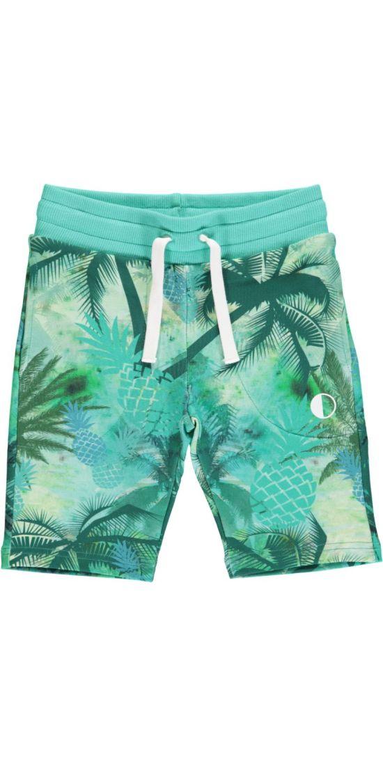Shorts - Maui03