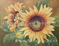 HAED - Sunflowers (Aida 18ct)