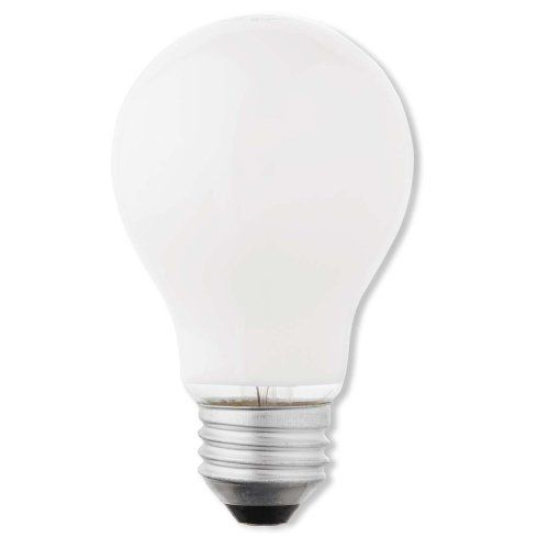 A majority of home owners and business owners in the contemporary world are replacing regular light bulbs with LED lights. http://jeremys.biz/differences-between-regular-light-bulbs-and-led-lights/