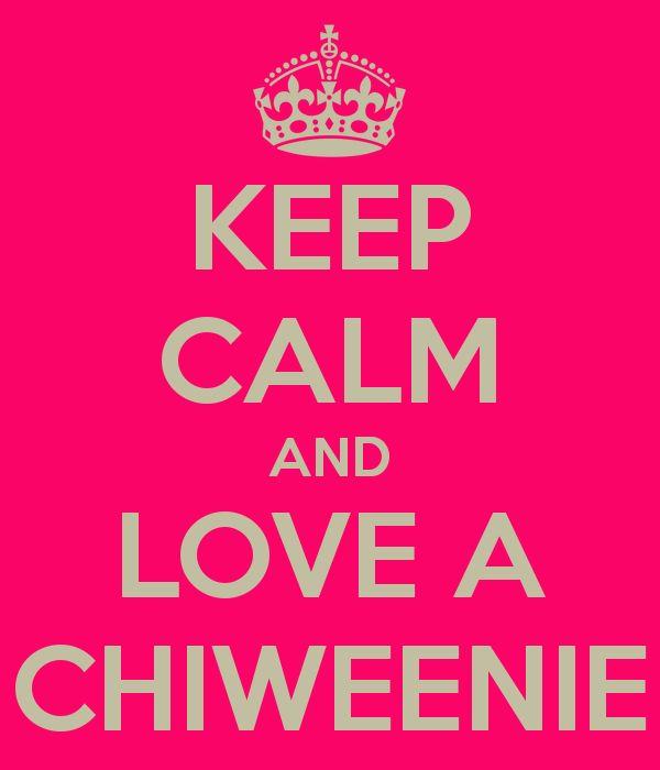 I love my Chiweenie!