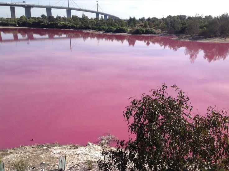 Pink Lake - Under the west gate bridge - Melbourne - Photo by Dagmara Gieysztor