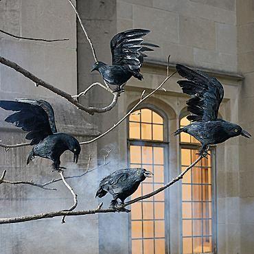 black crows set of 4 halloween yard propsoutdoor