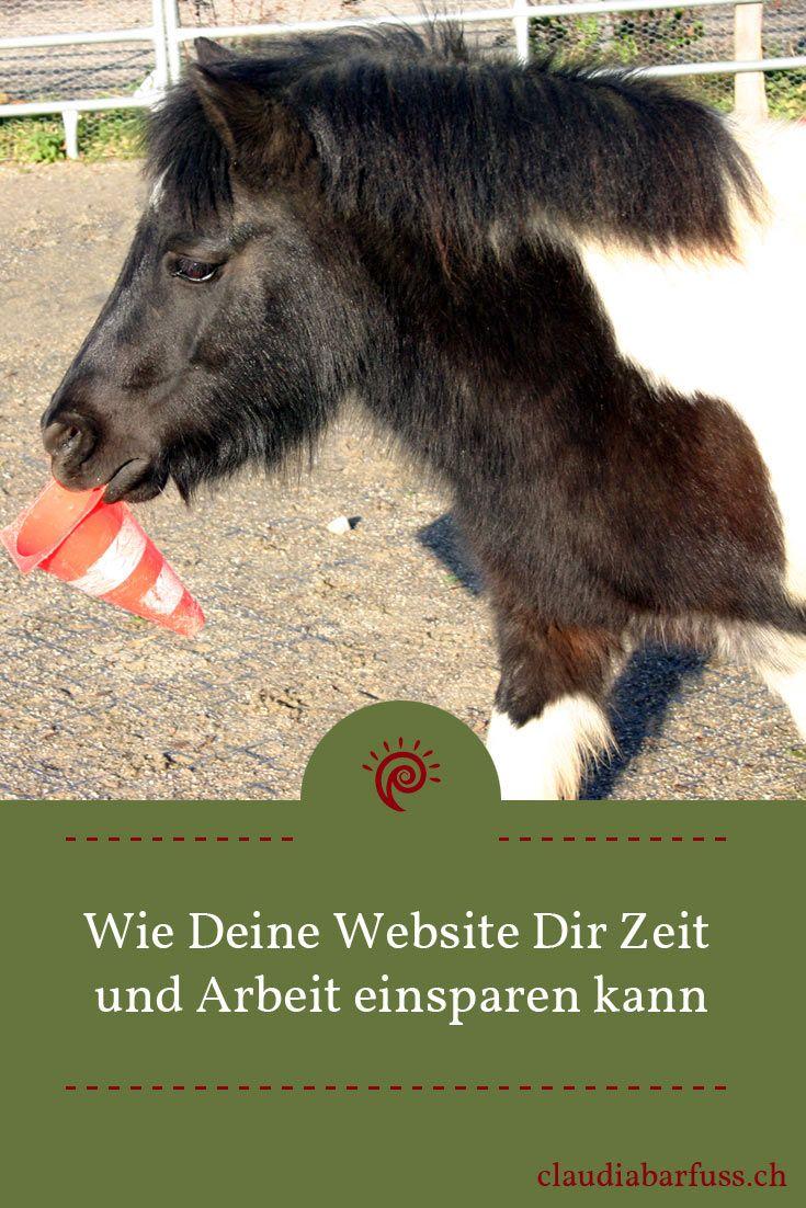https://www.claudiabarfuss.ch/website-zeit-arbeit-sparen/