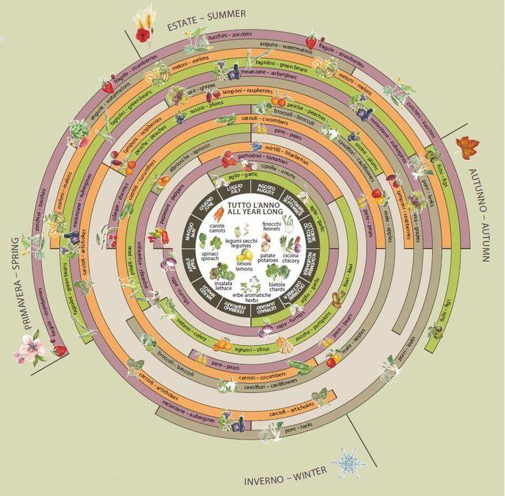 Slow Food - la ruota delle stagioni
