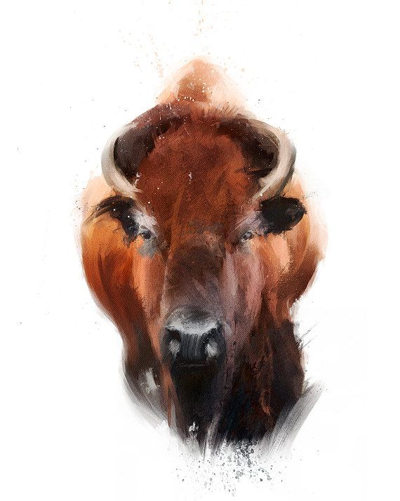 Bison / Original Illustration Art Print  Wall Decor  by Garillu, zł100.00