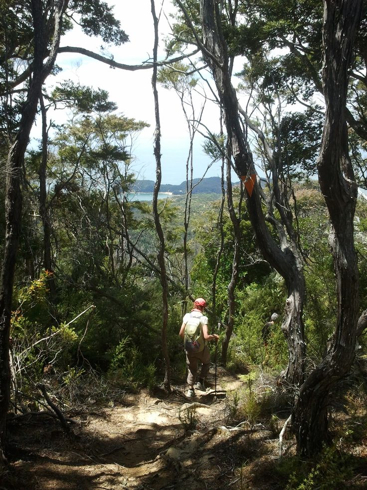 Hiking doesn't get better than this! Join us January 2017 in the fabulous Abel Tasman National Park, New Zealand.