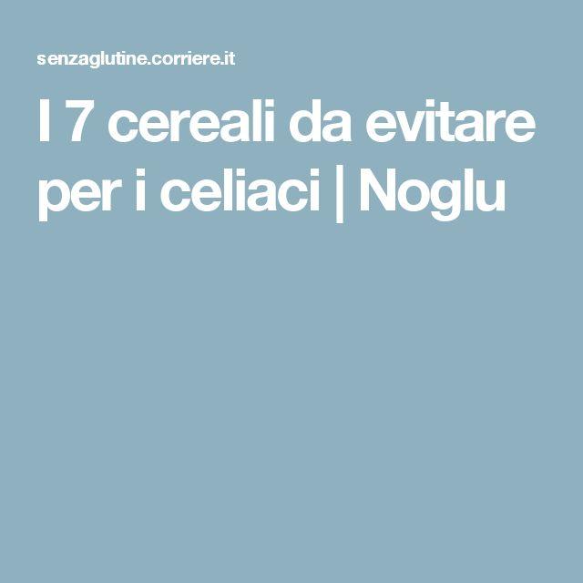 I 7 cereali da evitare per i celiaci | Noglu