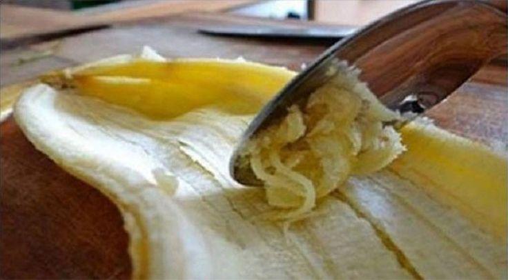 Nunca imaginei que esta parte da banana servisse para algo, mas a partir de agora nunca mais a deito para o lixo. Quem me dera ter descoberto isto mais cedo!