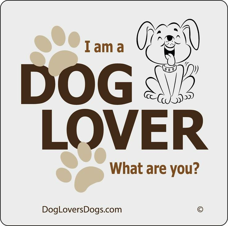 I am a dog lover....what are you?