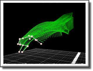 monkey motion capture