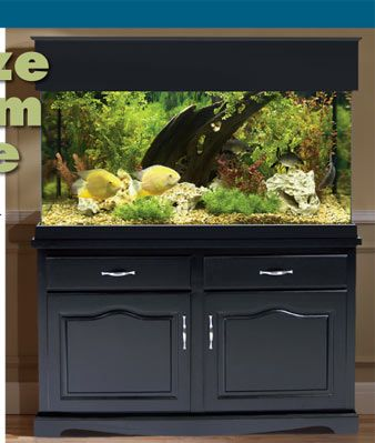 Aquarium stands and canopies showcase your aquarium with for Tank furniture
