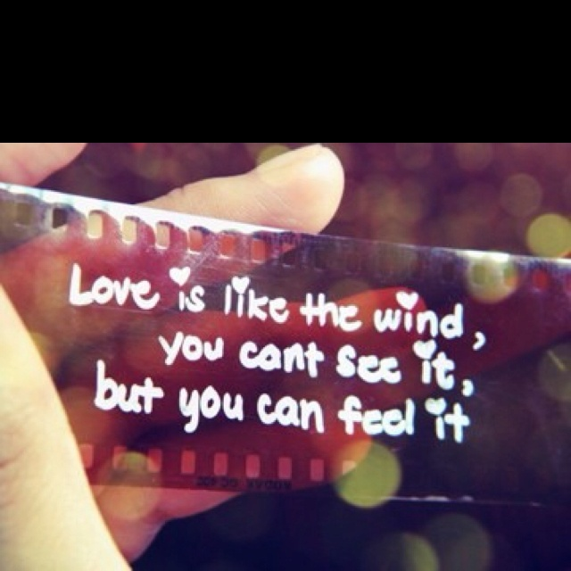 a walk to remember quotes our love is like the wind - photo #7