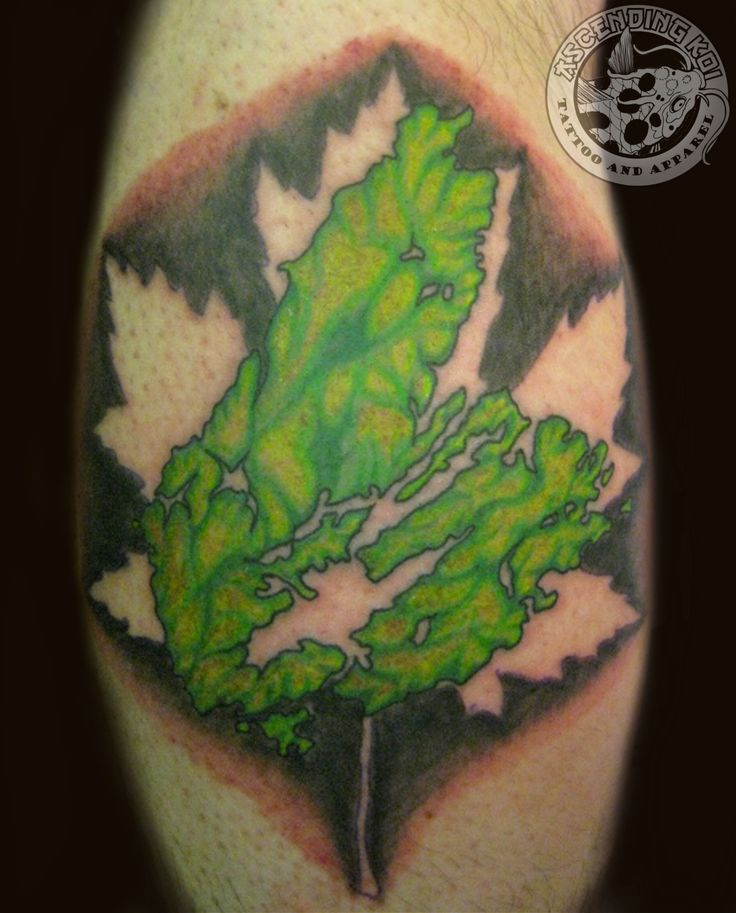 Topographical view of Cape Breton done by Chris #tattoos #ascendingkoi