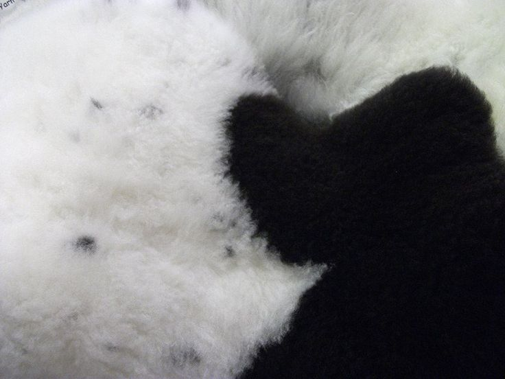 Sheepskin has been used for centuries not only because it is soft and warm, but…