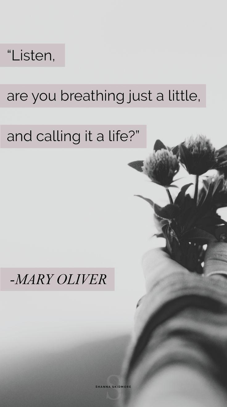 Mary Oliver Love Quotes Best 25 Mary Oliver Quotes Ideas On Pinterest  Olive Quotes