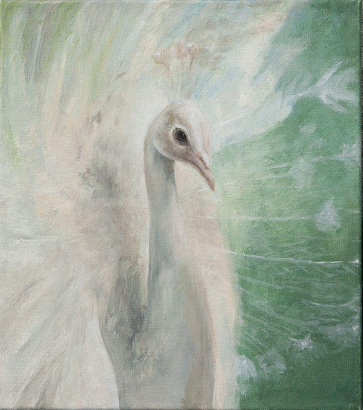White peacock, oilpainting on the canvas 40 x 45 cm http://www.drechsler.cz/jarka/