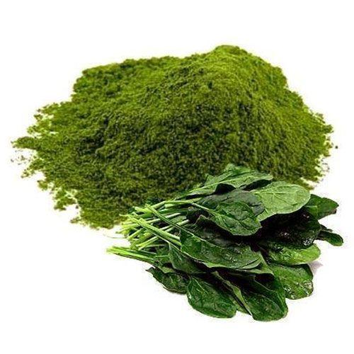 spinach-powder #spinach #spinachpowder #powder