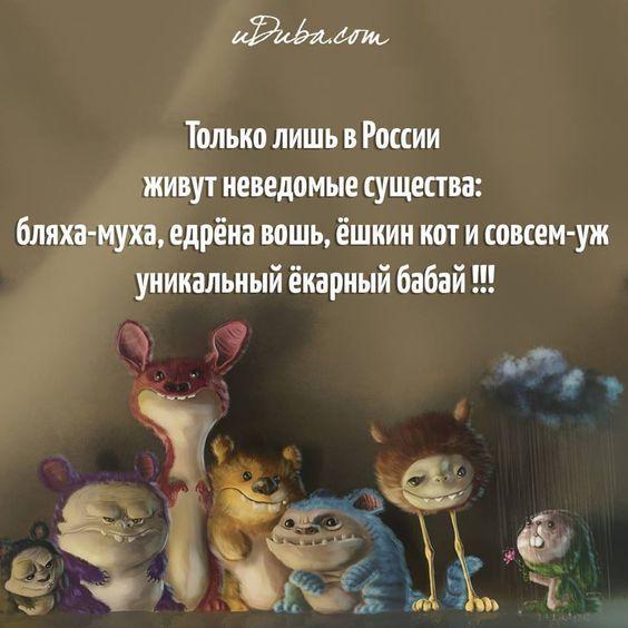 10400194_553161814860702_5958046828991257534_n.jpg (960×960):