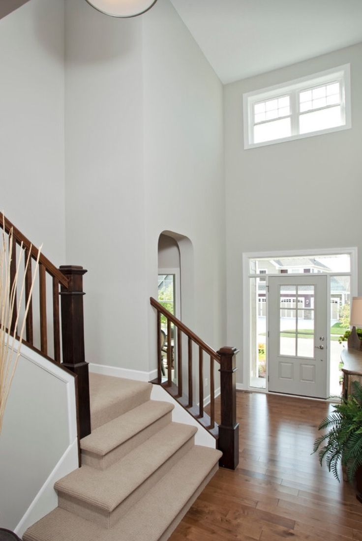 Wall color is Repose Gray Sherwin Williams | Paint colors ...