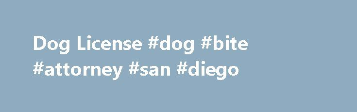 Dog License #dog #bite #attorney #san #diego http://diet.nef2.com/dog-license-dog-bite-attorney-san-diego/  # Dog Licenses A Rabies Vaccination Is Needed To license your dog, you must have proof – usually from a veterinarian – that your dog is current with its rabies vaccination. Dogs must be at least three months old before they can receive that vaccination. No appointment required. Microchips $10; rabies vaccination $10. Your dog must be on a leash; cats and rabbits in a secure carrier. If…