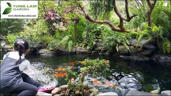 Phong thủy thiết kế sân vườn hồ cá - P1 ~ Thiết kế hồ cá Koi, thiet ke ho ca Koi