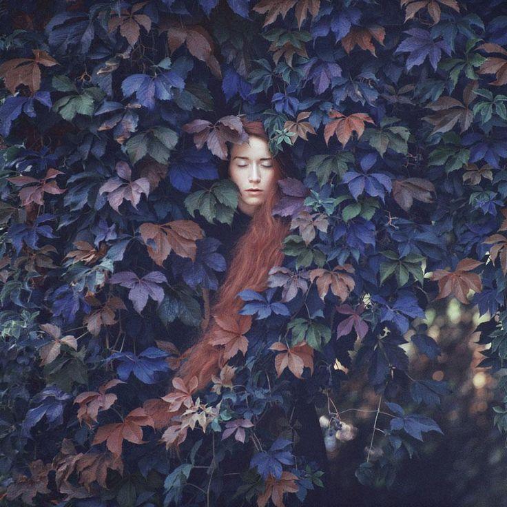 Un artiste prend des photos exceptionnelles avec un vieil appareil photo argentique