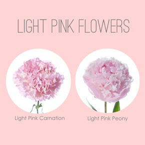 Our Favorite: Light Pink Flowers