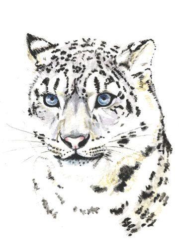 Leopardo de las Nieves 5 x 7 impresión de pintura por Earthspalette