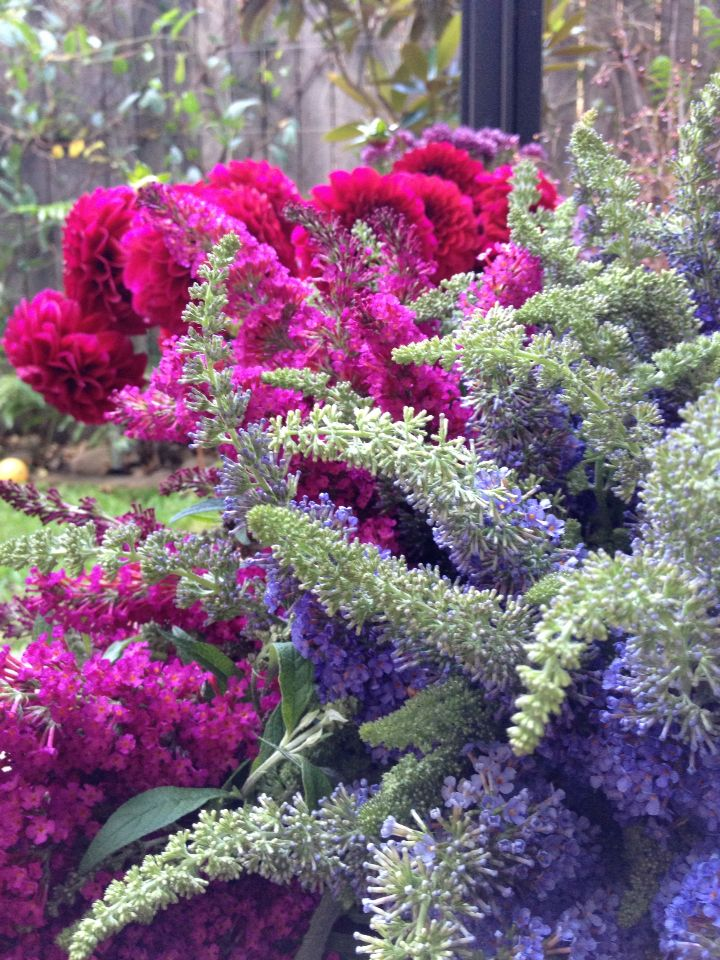 Flower Therapy #marketpick #eugalo
