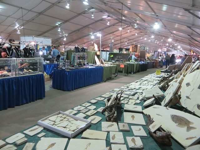 22nd Street Mineral & Fossil Show By The Arizona