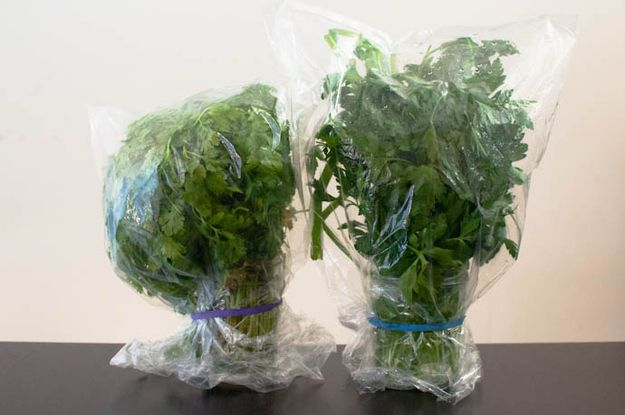 Store delicate herbs like flowers, then cover with plastic, secure with a rubberband, and refrigerate. | 27 Ways To Make Your Groceries Last As Long As Possible