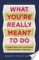 What You're Really Meant to Do, By Robert  Kaplan, Call # HF5381.K357 2013