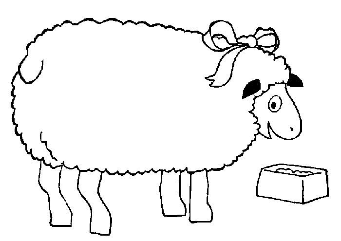 Sheep And Lamb Coloring Pages Clipart Best Clipart Best