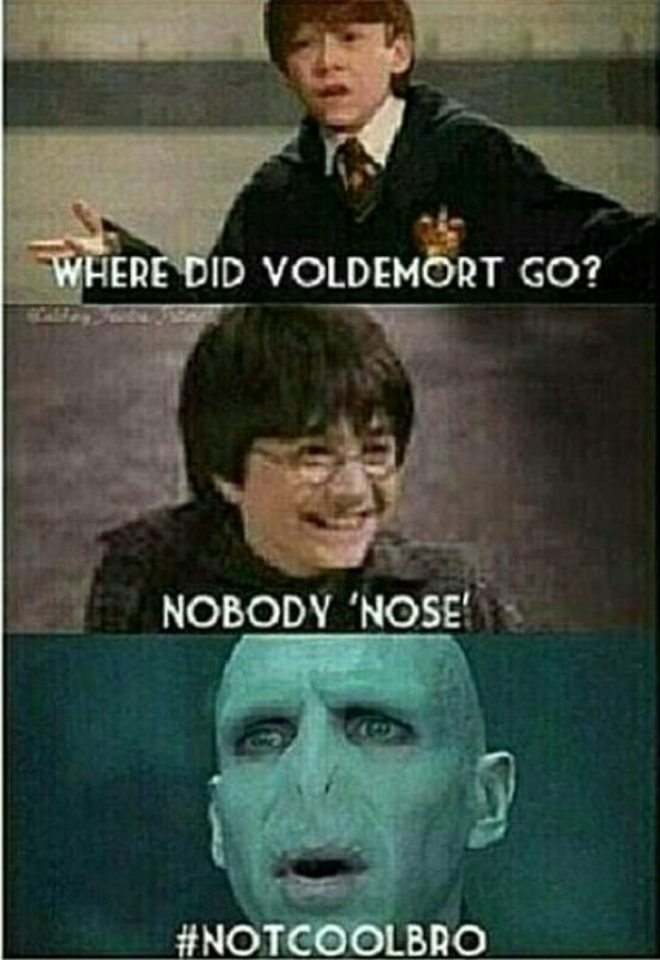 Nobody Sees Nobody Nose The Chamber Of Secrets Can 39 T Be Exposed That 39 S Harry Potter Memes Hilarious Harry Potter Funny Pictures Harry Potter Images