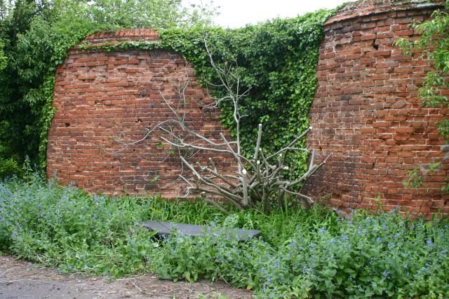 A 200-year-old 'Crinkle Crankle' Wall, near Fakenham town centre, Norfolk.