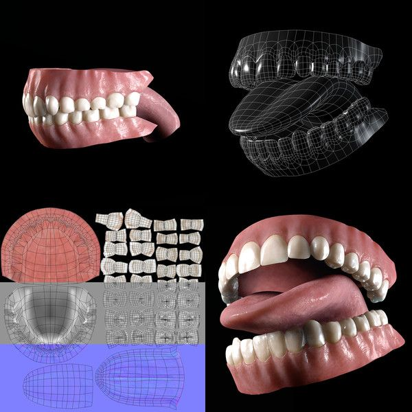 Mouth and teeth topology