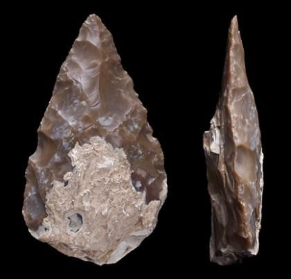 Paleolithic Hand Axe 91 best images about A...