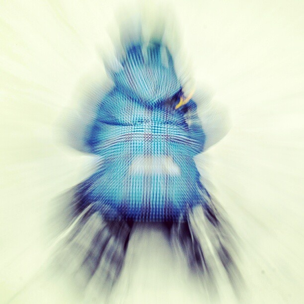 zoom burst