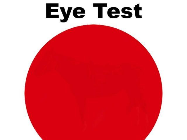 Only Certain People Can See The Hidden Image Inside This Eye Test | PlayBuzz  I can, can you?