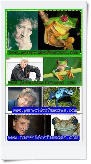 Parecidos con famosos: Enrique San Francisco con rana del amazonas